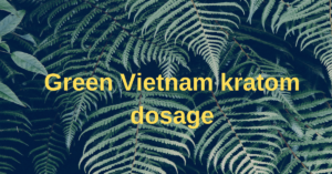 Green Vietnam kratom dosage