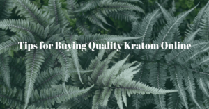 Tips for Buying Quality Kratom Online