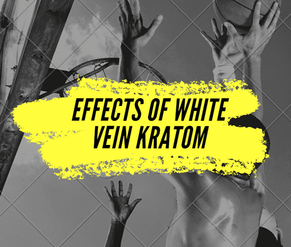 Effects of White Vein Kratom